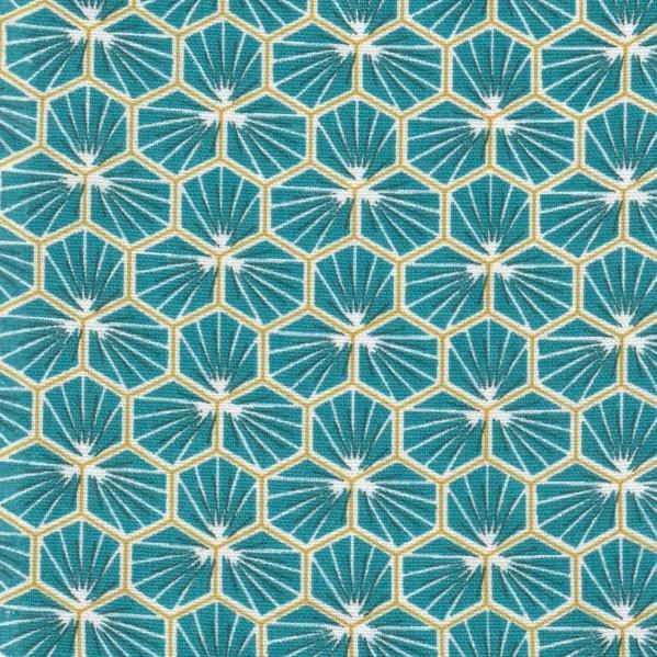Hexagone bleu canard