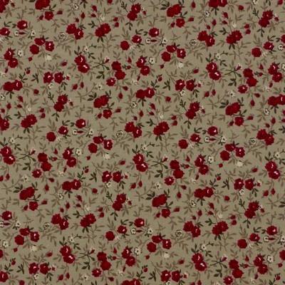 Fleurs petites rouges