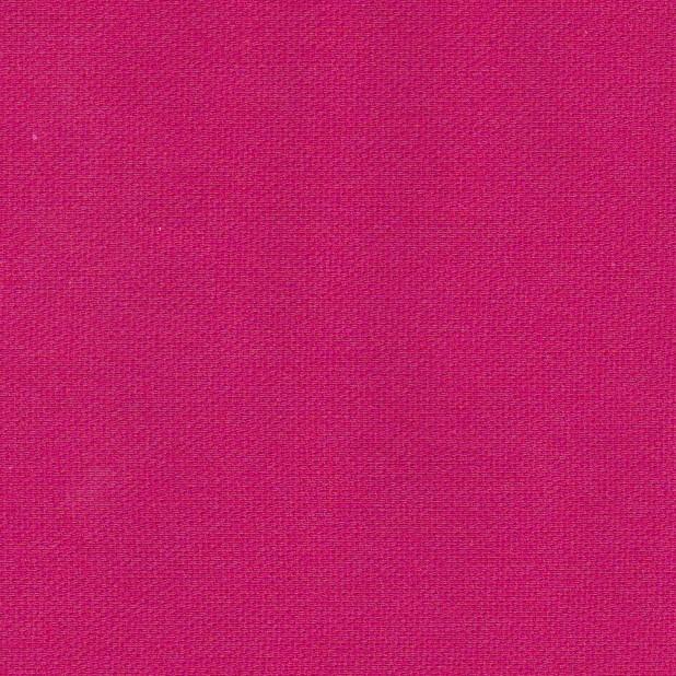 Fuchsia fabri